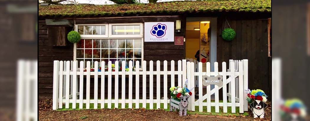 Welcome to Shampoodle Dog Grooming